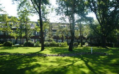 72 m² große Bürofläche zur Untervermietung mit Blick auf den Park